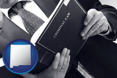 nm an attorney reading a criminal law book