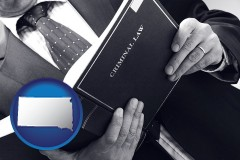 sd map icon and an attorney reading a criminal law book
